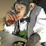 Chimp croupier dies of heart attack after being forced to smoke and drink at Russian casino