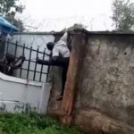 Suspected burglar electrocuted while scaling fence – Watch Video