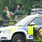 Just In: Tiger kills  female Zookeeper in a freak accident
