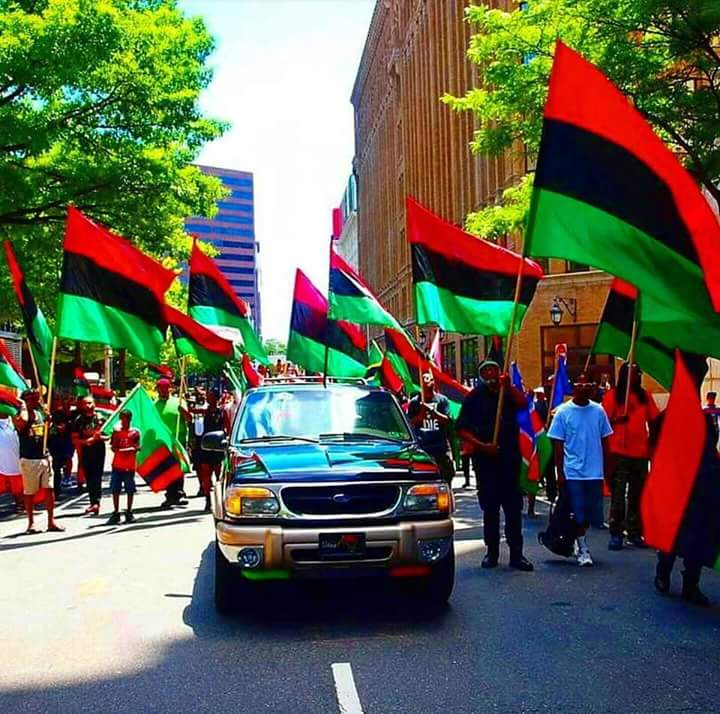 Photo of Biafra will not be written off until the zoo is crashed