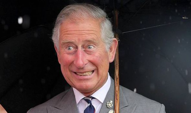 Prince, Prince Charles of Britain steps up as Queen steps back, Latest Nigeria News, Daily Devotionals & Celebrity Gossips - Chidispalace
