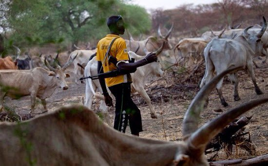 Foreign Fulani herdsmen attacking us, says Plateau monarchs