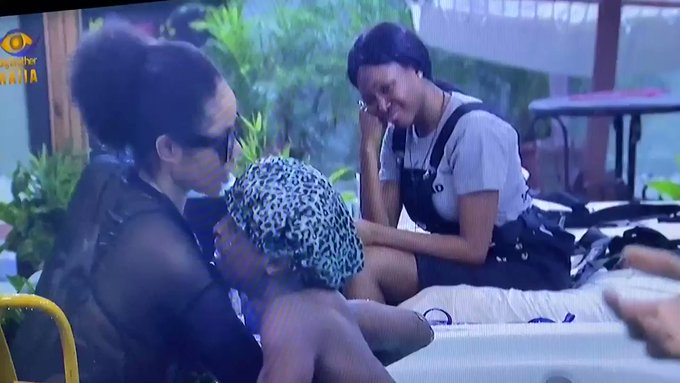 BBNaija 2020: The chemistry between Laycon and Nengi is VERY strong